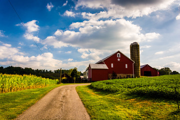 Driveway and red barn in rural York County, Pennsylvania. Wall mural