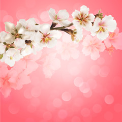 Blooming tree branch with pink flowers on bokeh background.