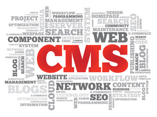 CMS Content Management System word cloud, vector background