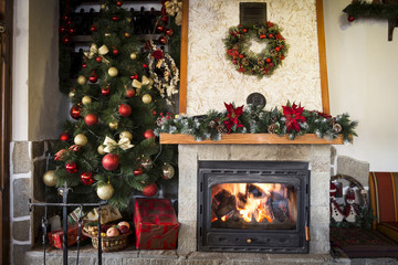 Christmas tree and burning fireplace at home