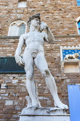David of Michelangelo - Florence