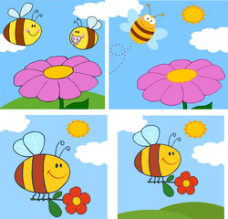 Cartoon Bee Character. Collection Set
