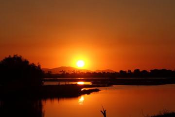 marsh in the sunset alva beach australia