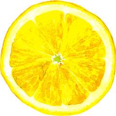 slice of lemon drawing by watercolor