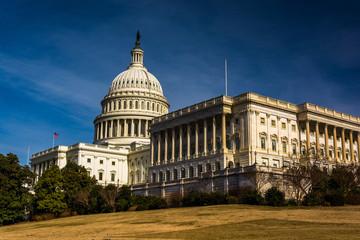The United States Capitol, Washington, DC.