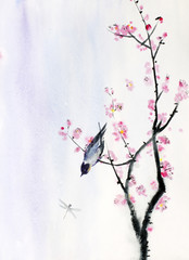 bird on a branch of sakura