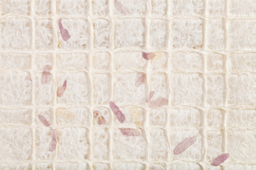 Wall Mural - background with leaves in handmade paper