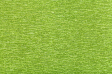 Wall Mural - background from fibrous structure green paper