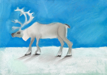 reindeer on snow under dark blue sky