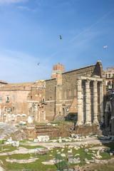 Foro di Nerva e Foro Roma (Tempio di Marte Ultore)