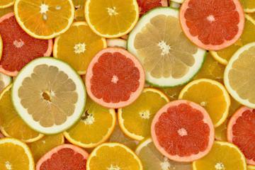 Wall Mural - Owoce cytrusowe 10
