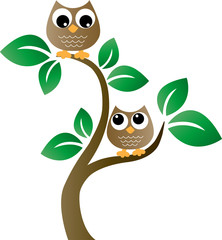 two brown owls sitting in a tree