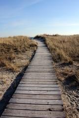 Beach Boardwalk in Winter II