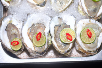 Oysters with lemon and pepper