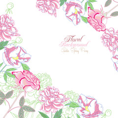 Background with  peonies and pink rose-03