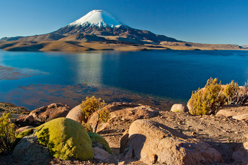 Lake Chungara at Parinacota national park