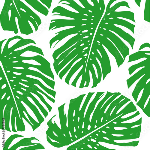 tropical leaves pattern stock image and royalty free vector files