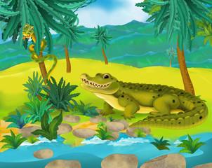 Cartoon scene - wild america animals - alligator - illustration for the children
