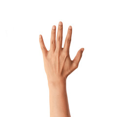 Hand isolted on white background