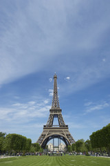 Eiffel Tower with Green Grass and Blue Sky
