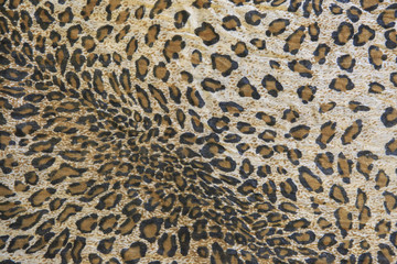 cheetah texture for a background