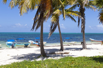 Idyllic beach with coconut trees and small fishing boats at Mexi