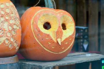 Pumpkin with carved owl face