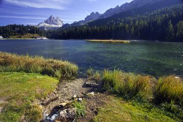 Lago di Misurina, Belluno, vegetazione rigogliosa