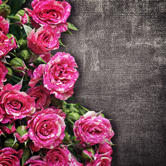bouquet of pink roses on a dark fabric background
