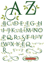 Ornate alphabet of vector letters with leaf design and ornaments