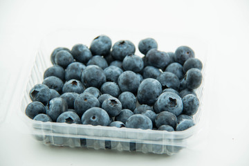 Wall Mural - Blueberry fruit on white background