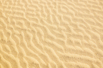 The texture of the sand dunes.