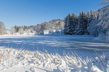 Lac gelé des Vosges