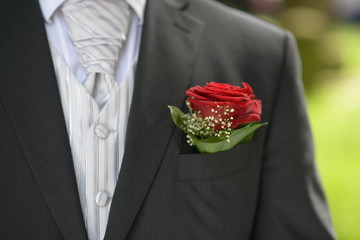 Flower in the pocket of the suit