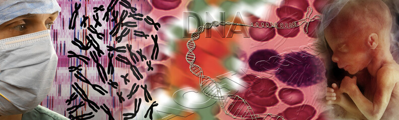 Genetics - DNA - Fetus