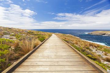 Boardwalk to the coast