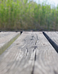 Wooden jetty closeup, selective focus