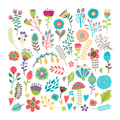 Wall Mural - Hand drawn floral elements