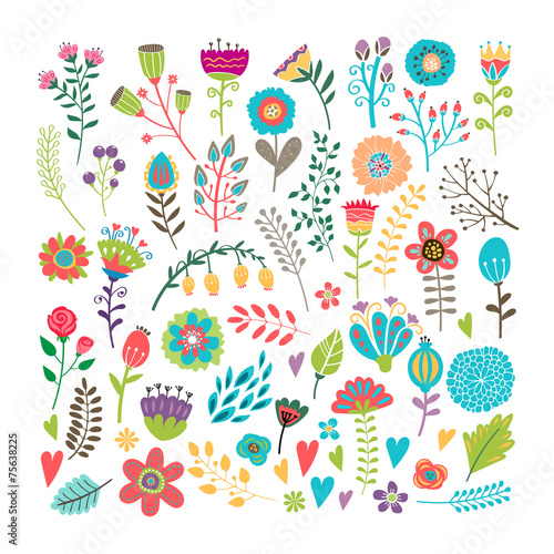 Wall mural Hand drawn floral elements