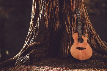 Wall Mural - Acoustic Guitar and Tree