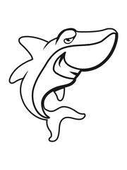Shark fish funny