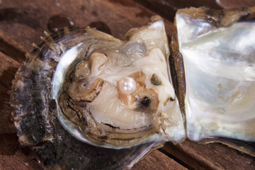 Pearl inside a oyster