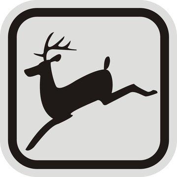 deer, frame