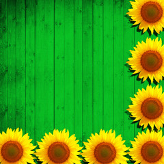 flower sunflower and green wood background