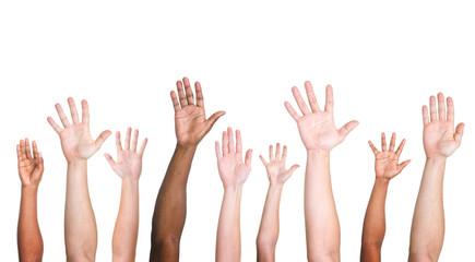 Participation Diversity Volunteer Ethnicity Variation Concept