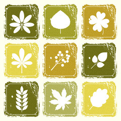 Set of icons with leaves