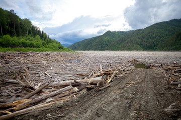 Driftwood near dam of hydro power plant with access road