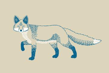 Monochromatic fox draw