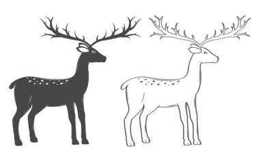 Christmas reindeer, set on white background