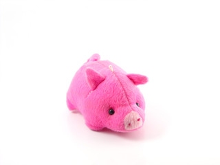 cute pink pig doll isolated on white background